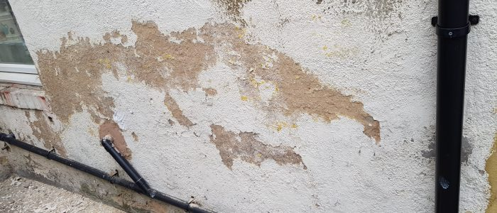 Damp proofing and painting