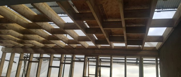 Hip to Gable loft conversion - Roof Joists